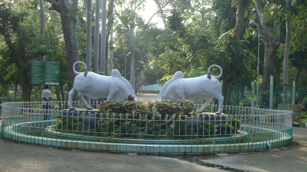Pondicherry Botanical Garden