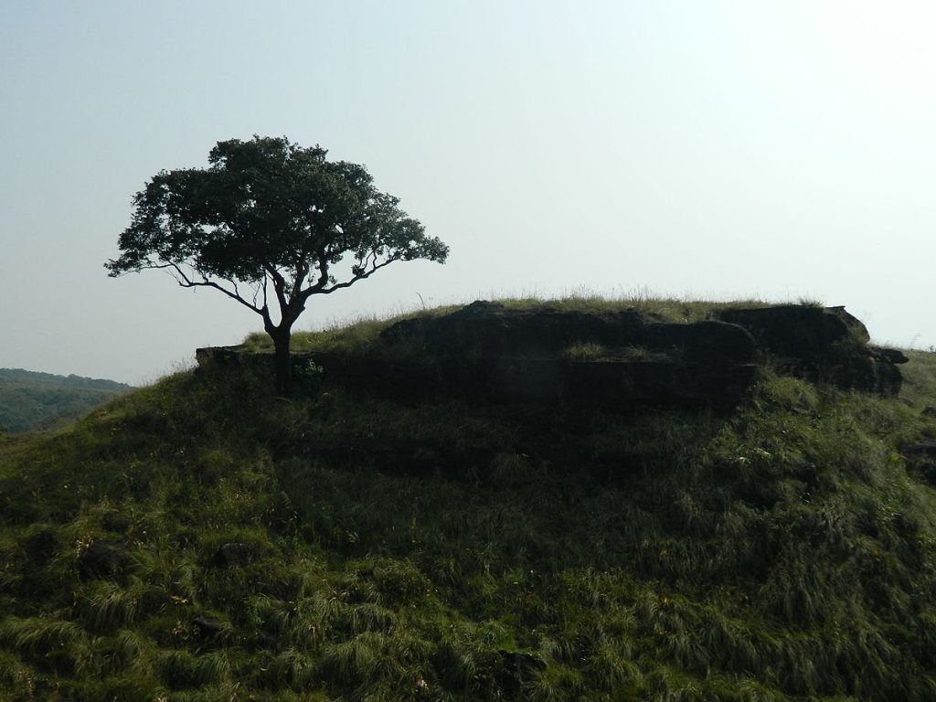 Balpakram National Park